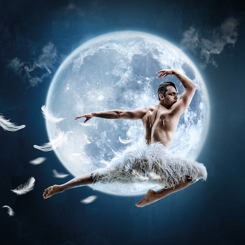 Swan Lake swoops and soars on to the big screen in Milford Haven